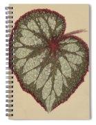 Painted Leaf Begonia Spiral Notebook
