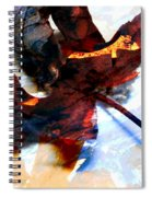 Painted Leaf Series 2 Spiral Notebook