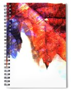 Painted Leaf Series 4 Spiral Notebook