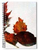 Painted Leaf Series 5 Spiral Notebook
