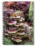 Painted Mushrooms Spiral Notebook