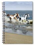 Painted Ocean Spiral Notebook
