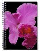 Painted Orchid Spiral Notebook