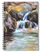 Painted Rocks Spiral Notebook