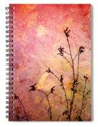 Painted Skies 2 Spiral Notebook