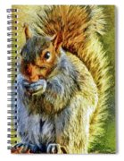 Painted Squirrel  Spiral Notebook