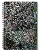 Painted Treebark Woodcut Spiral Notebook