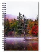 Painted Trees Spiral Notebook