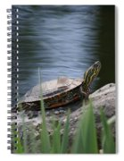 Painted Turtle Spiral Notebook
