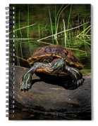 Painted Turtle Sunning Itself On A Log Spiral Notebook