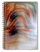 Painted Windows Spiral Notebook