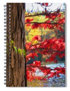 Painterly Rendition Of Red Leaves And Tree Trunk In Autumn Spiral Notebook