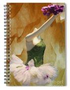 Painting A Ballet Dream Spiral Notebook
