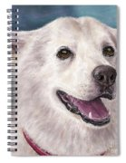 Painting Of A White And Furry Alaskan Malamute Spiral Notebook