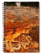 Painting Of Nature Spiral Notebook