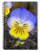 Painting Of Pansey Flower Spiral Notebook