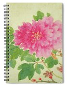 Painting Of Peonies Spiral Notebook