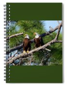Pair Of American Bald Eagle Spiral Notebook