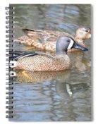 Pair Of Blue Wings Spiral Notebook