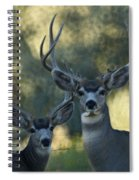 Pair Of Bucks Spiral Notebook
