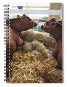 Pair Of Cows Spiral Notebook