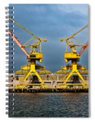 Pair Of Cranes Spiral Notebook