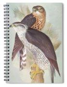Pair Of Goshawks Spiral Notebook