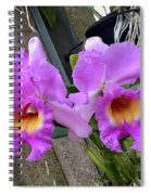 Pretty Purple Orchids Spiral Notebook
