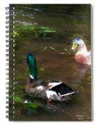 Pair Of Mallard Duck 10 Spiral Notebook