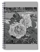 Pair Of Roses In Grayscale Spiral Notebook