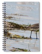 Pair Of Willets Spiral Notebook