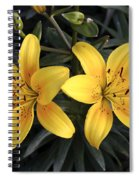 Pair Of Yellow Lilies Spiral Notebook