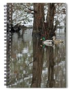 Paired Up - Awaiting Spring Spiral Notebook