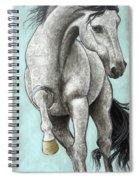 Paisleylusian Spiral Notebook