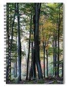 Palatine Forest Spiral Notebook
