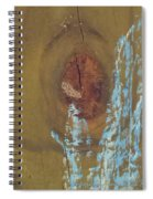 Pale Blue Chalk On Wood Spiral Notebook