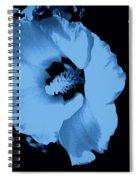 Pale Blue Tinge Hibiscus Flower Spiral Notebook
