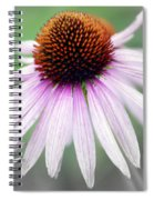 Pale Grey Spiral Notebook