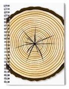 Pale Log End Spiral Notebook