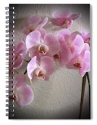 Pale Pink Orchids B W And Pink Spiral Notebook