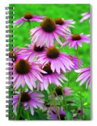 Pale Purple Coneflowers Spiral Notebook
