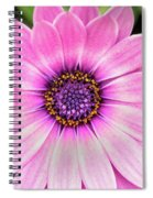 Pale Purple Flower Spiral Notebook