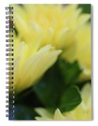 Pale Soft And Yellow Flower Abstract At Sunset Spiral Notebook
