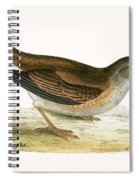 Pale Thrush Spiral Notebook