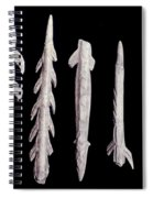 Paleolithic Harpoons Spiral Notebook