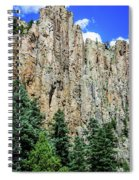 Palisades - Cimarron Canyon State Park - New Mexico Spiral Notebook