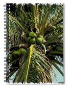 Palm 1 Spiral Notebook