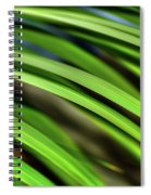 Palm Abstract By Kaye Menner Spiral Notebook