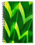 Palm Abstract Spiral Notebook