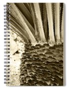 Palm Abstraction Spiral Notebook